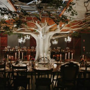 STYLED SHOOT :: OSTERIA CASUARINA WEDDINGS, AUTUMN GROVE EVENTS VINTAGE TREE